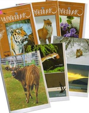 Детский журнал о природе для семейного чтения «Муравейник»